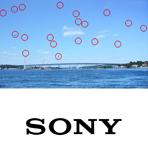 Sony Sensor Cleaning Service